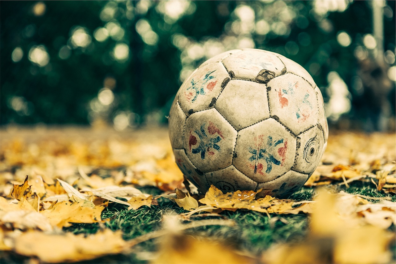 soccer-698553_1280